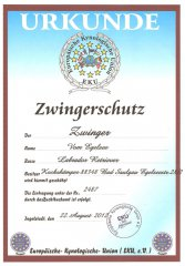 eku-zwingerschutz-urkunde.jpg